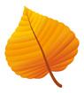 연주황색단풍잎 템플릿