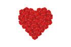 빨간색 장미꽃으로 만든 하트 템플릿