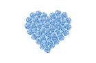 파란색 장미꽃으로 만든 하트 템플릿