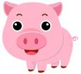 돼지 템플릿