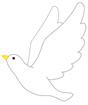 비둘기 템플릿