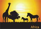 아프리카 초원의 말과 기린의 실루엣 템플릿