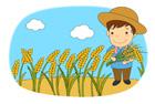 벼와 농부 템플릿
