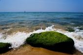 이끼 낀 바위와 바다 템플릿
