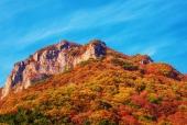 가을산과바위 일러스트/이미지