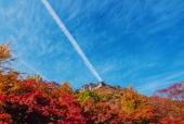 가을산과나무 일러스트/이미지