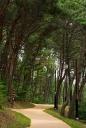 산책로 템플릿