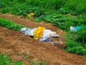 논밭에 쓰레기 템플릿