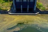 오염된 하천 템플릿