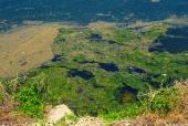 오염된 강과 녹조 템플릿