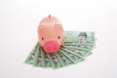 돈 위에 돼지저금통 템플릿