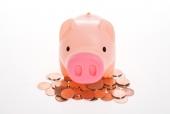 동전 위에 돼지저금통 템플릿