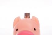 돼지저금통과 동전 템플릿