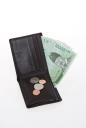 지갑과 돈 템플릿