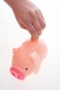 돼지저금통과 동전 들고 있는 손 템플릿