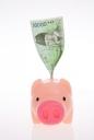 돼지저금통과 돈 템플릿