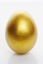 황금달걀 템플릿