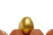 달걀 위에 황금달걀 템플릿