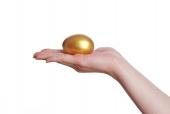 손 위에 황금달걀 템플릿