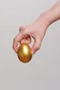 황금달걀 잡고 있는 손 템플릿