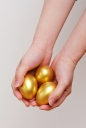 두 손 위에 황금달걀 템플릿