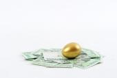돈 위에 황금달걀 템플릿