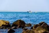 바다 위에 보트 템플릿
