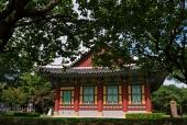 전통건물과 나무 템플릿