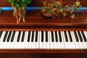 피아노건반 일러스트/이미지