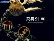 공룡의 뼈 템플릿