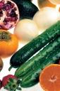 과일 채소들 템플릿