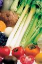 각종 채소 과일 템플릿