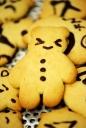 쿠키 템플릿