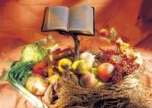 성경전서와 십자가 템플릿