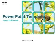 꽃과 벌 B 템플릿