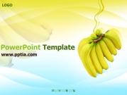 바나나 B 템플릿